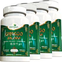 Kit 4 Ginkgo Biloba Katigua 60 Cápsulas -