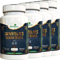Kit 4 Tribulus Terrestris Jili 400 mg 60 Capsulas Katigua -