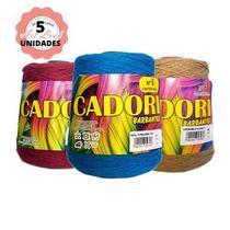 Kit 5 barbantes cadori 4/6 especial 700g cores variadas -