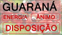 Kit Capsula Guaraná 250mg - 2 potes - All chemistry