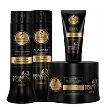 Kit Cavalo Forte (Sh + Condic + Masc + Leave-in) 300ml- Haskell -