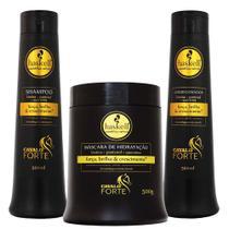 Kit Cavalo Forte Shampoo Condicionador E Máscara 500ml - Haskell -