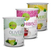 Kit Chás Solúveis - Hibisco, Chá Verde E Chá De Oliveira - Ponto Natural