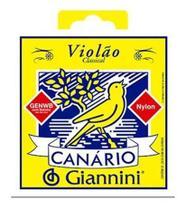 Kit com 2 Encordoamentos. P/VIOLAO NAILON Canário C/BOLINHA - Giannini