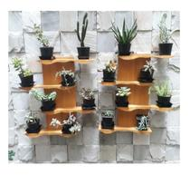 Kit com 2 Floreira de madeira para suculentas ou mini cactus Modelo Oceano - Cor Amarelo Queimado - Madetop