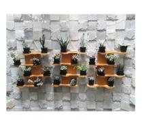 Kit com 3 Floreira de madeira para suculentas ou mini cactus Modelo Oceano - Cor Amarelo Queimado - Madetop