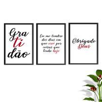 Kit Conjunto Quadros com Vidro 3 peças Frases Auto Ajuda Pensamentos Gratidão Cor Vermelho Decorativo - Oppen House -