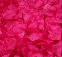 Kit de Pétalas Artificiais Pink - 1000 pétalas - Nice