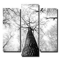 Kit De Quadros Decorativos Árvores No Outono Preto E Branco - Kiaga