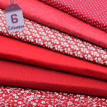Kit de Tecido Vermelho (30x70) 6 Estampas - Horizonte