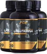 Kit l-glutamina  500mg 120 caps 6 potes premiun - Fitoplant