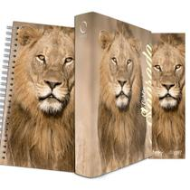 Kit Leão no Campo Trigo - Planner + Bíblia Capa Dura NAA + Marca Página - Book7