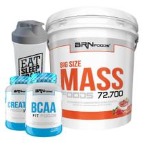 Kit Massa Hipercalórico - Big Size Mass 6kg Morango + BCAA + Creatina Foods 100% 100g + Coqueteleira  BRNFOODS - BRN Foods