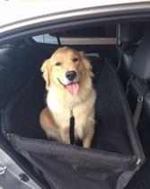 Kit passeio-capa protetora carros G -cinto segurança e peitoral - King Of Pets