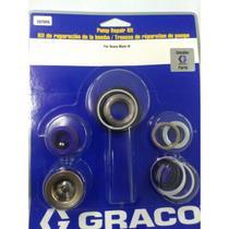 Kit Reparo Mark IV - PN 287825 - Graco -