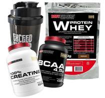 Kit Whey Protein 500g Chocolate + BCAA 4,5 Tangerina 100g + 100% Creatine 100g + Coqueteleira 600 ml - Bodybuilders