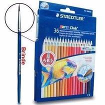 Lapis Cor 36 cores Staedtler Noris Club Aquarelável + Pincel -