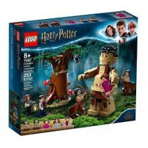 LEGO Harry Potter - A Floresta Proibida: O Encontro de Grope e Umbridge - 75967 -