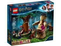 LEGO Harry Potter Floresta Proibida o Encontro - Grope 253 Peças 75967