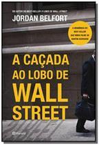 Livro - A caçada ao Lobo de Wall Street -