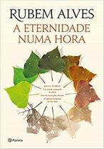 Livro - A eternidade numa hora -