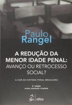 Livro - A Redução Da Menor Idade Penal: Avanço Ou Retrocesso Social? A Cor Do Sistema Penal Brasileiro -
