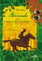 Livro - Bernardo e o Enigma das Amazonas -