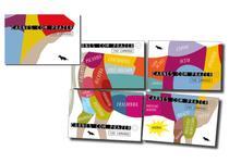Livro - Coleção dos cortes de carne bovina - Carnes com prazer 1, 2, 3 e 4