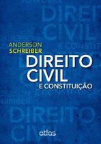 Livro - Direito Civil E Constituição -