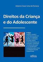 Livro - Direitos Da Criança E Do Adolescente -