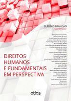Livro - Direitos Humanos E Fundamentais Em Perspectiva -