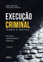 Livro - Execução Criminal: Teoria E Prática -