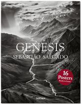 Livro - Genesis -