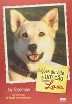 Livro - Lições de vida de um cão chamado Lava -