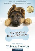 Livro - MEU AMICÃO -