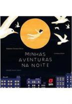 Livro minhas aventuras na noite ed19 - Edicoes Sm - Paradidatico