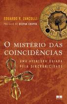 Livro - O mistério das coincidências -