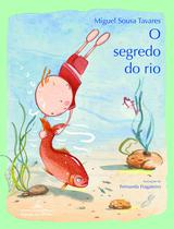 Livro - O segredo do rio -