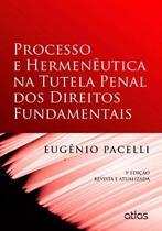 Livro - Processo E Hermenêutica Na Tutela Penal Dos Direitos Fundamentais -
