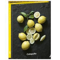 Livro - Senttia Limão -