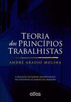 Livro - Teoria Dos Princípios Trabalhistas Aplicação Modelo Metodológico Pós-Positivista Ao Dto Do Trabalho -