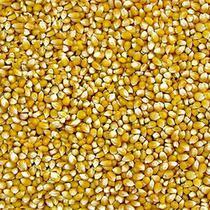 Milho de Pipoca (Granel 100g) - Sabor Em Grãos