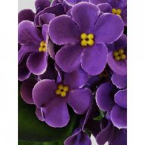 Mini buquê violetas aveludadas artificial 17cm - roxa - H8 Decor