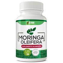 Moringa oleifera 500mg 120cps vida ervas -