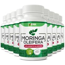 Moringa oleifera 500mg 9x 120cps vida ervas -