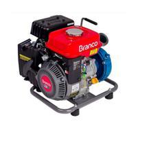 Motobomba B4t703 2Pol Motor Novo 3cv Partida Manual 90314525 Branco -