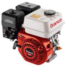 Motor 4 Tempos Gasolina 5.5HP Partida Manual S/ Sensor Óleo Branco -
