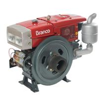 Motor A Diesel Branco BDA-22.0RAE 22Cv 1195cc Partida Elétrica -