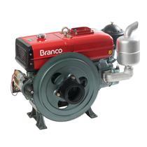 Motor A Diesel Branco BDA-22.0TE 22Cv  1195cc Partida Elétrica -
