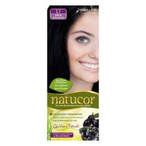 Natucor Tinta Kit 1.7 Jamelão -